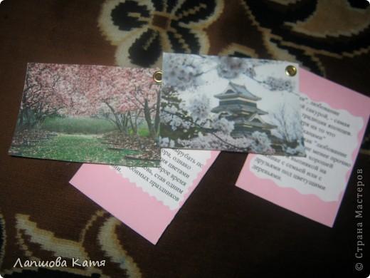 Я сделала АТСки с интересными сведениями  о сакуре(Японской вишне). Здесь 1-2.№2 занят.  фото 13