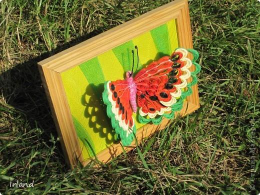 Специально для хомячка =)))   Что-то мне кроме бабочек в голову не лезет пока.  Фон сделан из материала напоминающий сетку =) название не помню простите =) фото 6