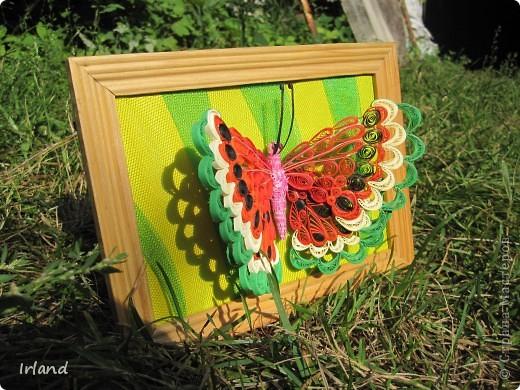 Специально для хомячка =)))   Что-то мне кроме бабочек в голову не лезет пока.  Фон сделан из материала напоминающий сетку =) название не помню простите =) фото 5