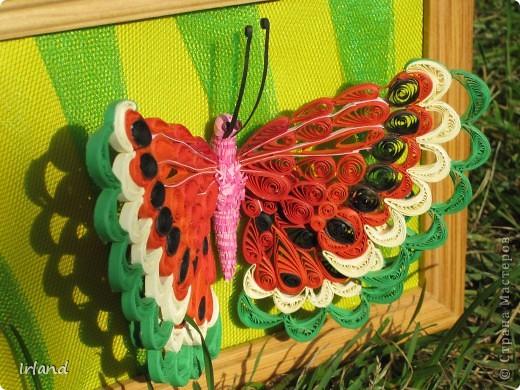 Специально для хомячка =)))   Что-то мне кроме бабочек в голову не лезет пока.  Фон сделан из материала напоминающий сетку =) название не помню простите =) фото 4
