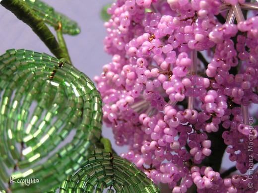 Цветочки для няни в детский сад...просто так! фото 4