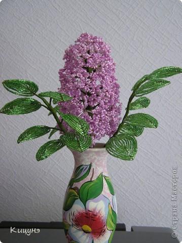 Цветочки для няни в детский сад...просто так! фото 3