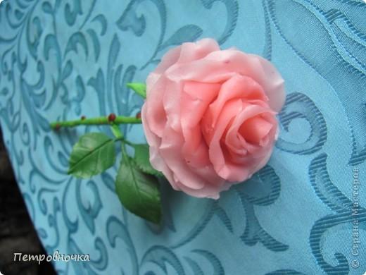Вот еще одна роза в мой букет. фото 1