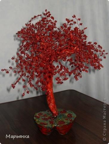 Рубиновое дерево