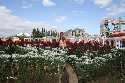 Отдых в Крыму. фото 27