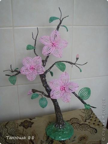 бонсай с розовыми цветами фото 4