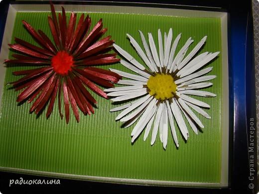 По просьбам мастериц рассказываю как мы с ребятками делали стрекозу и цветы. Сначала про стрекозку. фото 11