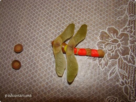 По просьбам мастериц рассказываю как мы с ребятками делали стрекозу и цветы. Сначала про стрекозку. фото 6