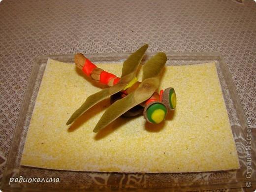 По просьбам мастериц рассказываю как мы с ребятками делали стрекозу и цветы. Сначала про стрекозку. фото 7