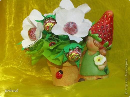 мишка с цветами фото 3