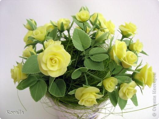 Желтые розочки фото 2