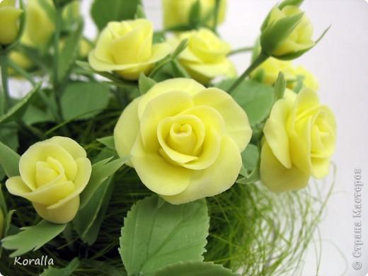 Желтые розочки фото 4