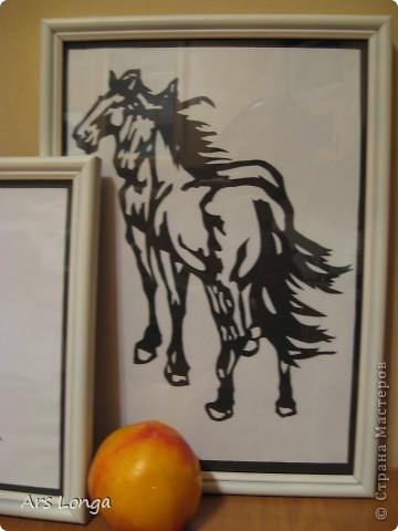 Здравствуйте, жители страны мастеров! Это моя первая ВЫТЫНАНКА. У нас есть родственница, которая очень любит лошадей и даже имеет свою небольшую конюшню. Лошадки породистые и принимают участие во всяческих всемирных конкурсах. Собираясь к ней в гости, созрела идея сделать вот такие картины фото 4