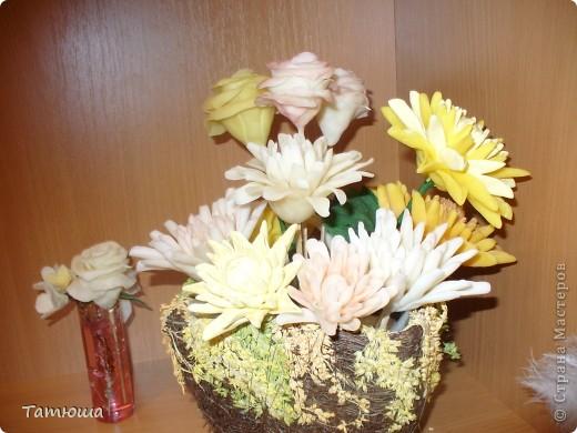 Хризантемы!