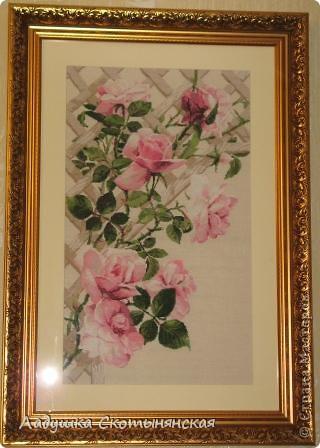 Розы. Подарок маме на день рождения.  фото 1