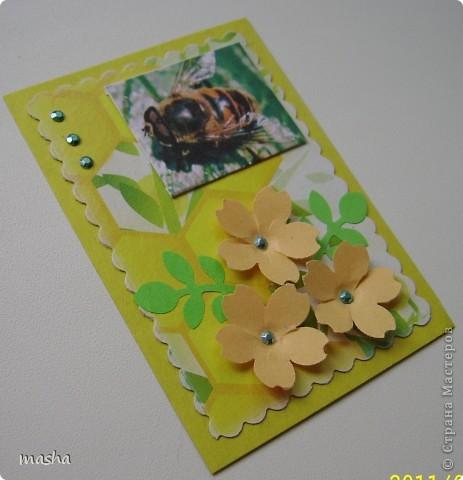 """Вот такие оригинальные карточки я получила по АТС-игре http://stranamasterov.ru/node/211670. Нашей группой была выбрана тема """"Чудеса природы"""". фото 9"""