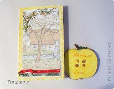 Пришел Яблочный Спас-пора собирать яблоки в садах. фото 2