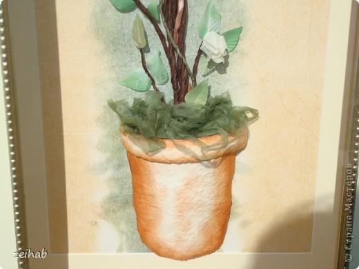 Букет  розы фото 3