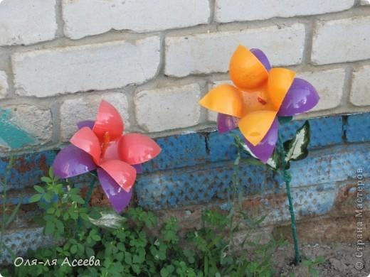 Цветочки сделаны из пластиковых шариков, которыми заполняют детские бассейны в игровых комнатах. фото 3