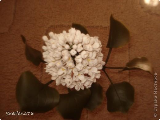 Сирень из запекаемой пластики, листья из холодного фарфора. фото 2