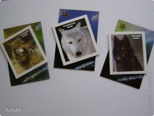 """Серия""""Волки"""".Волки приклеены на вспненый скотч,изображение3d. фото 1"""