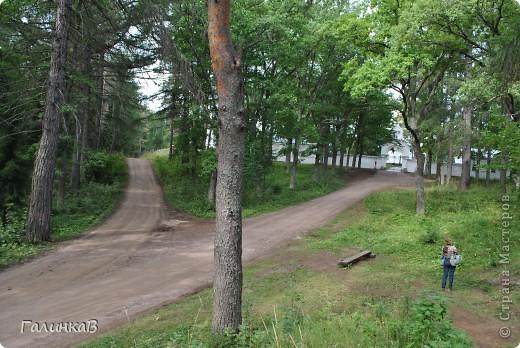 Сегодня мы отправимся в Смоленский скит. Дорога в него пролегает через лес - красивый и величественный. Расстояние до скита примерно 3 км фото 19