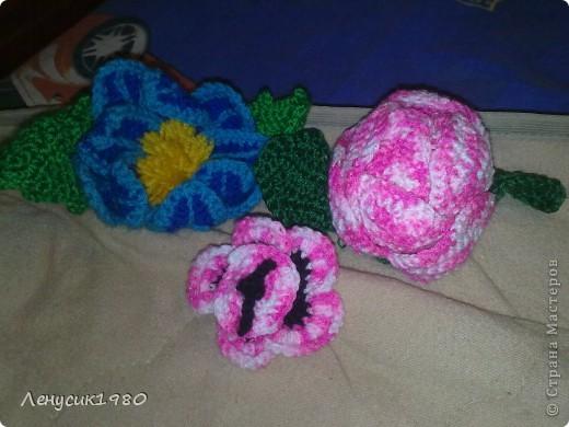 бутон розы фото 6