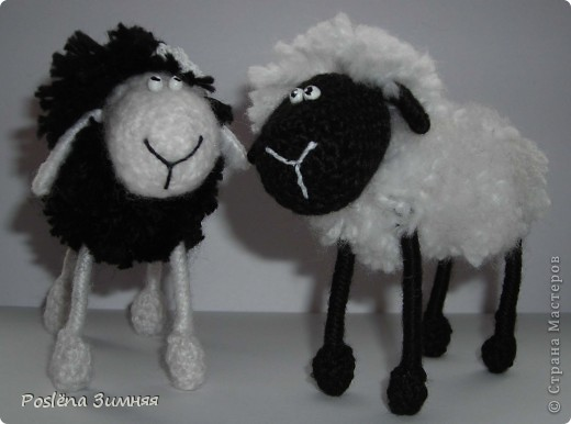 Пара овечек. фото 2