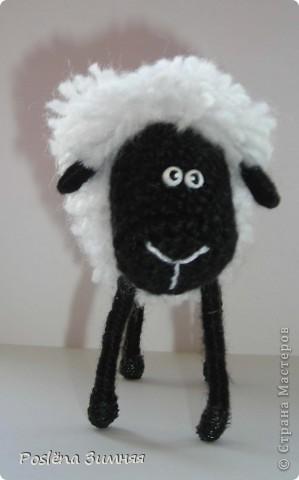 Пара овечек. фото 17