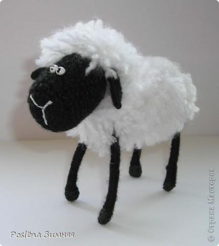 Пара овечек. фото 22