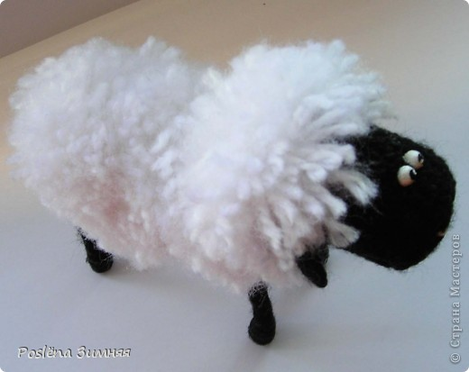 Пара овечек. фото 24