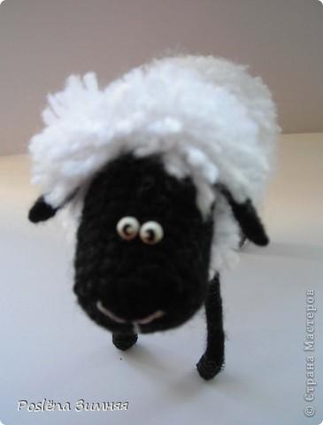 Пара овечек. фото 21