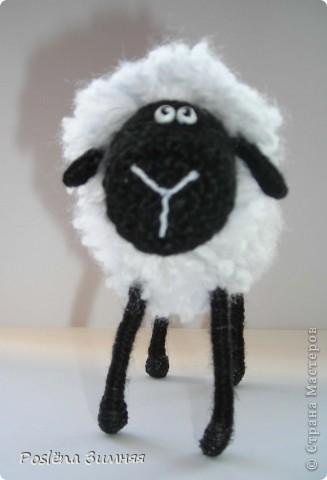 Пара овечек. фото 15