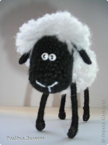 Пара овечек. фото 19