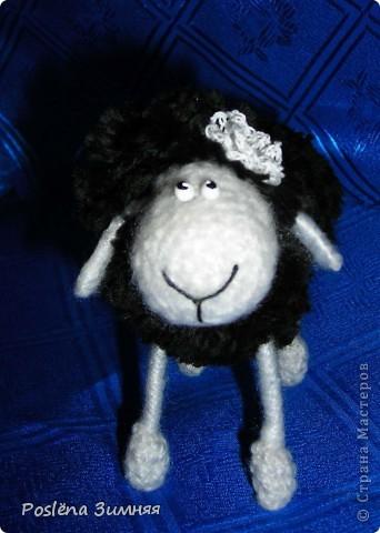 Пара овечек. фото 12