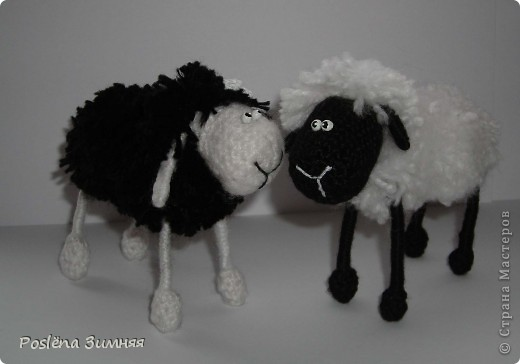 Пара овечек. фото 5