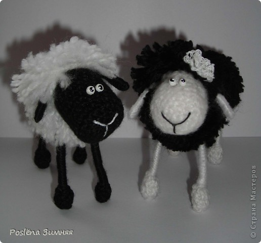 Пара овечек. фото 3