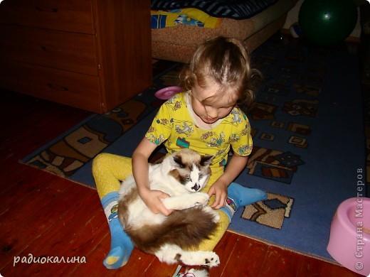 Это Настя и Персик, единственный котенок осавшийся у нас в семье и выросший у нас любимцем всей семьи. Его нам вернули за его разговорчивость. фото 1