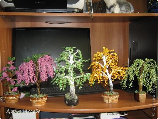 мои бисерные деревья фото 14