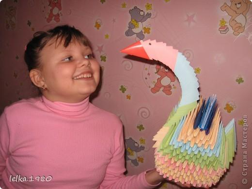 Лебедь счастья фото 1