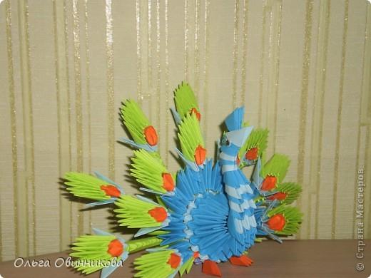 Царь птиц фото 2