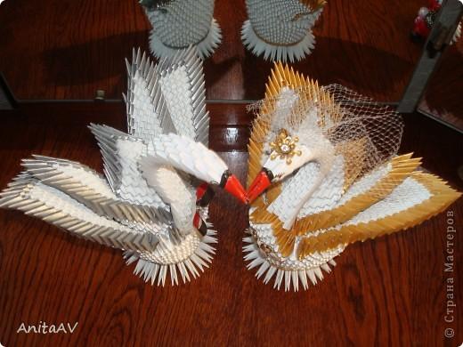 Однажды я начала готовиться к свадьбе... Как и каждая невеста, я стремилась украсить свой праздник. Я вспомнила, что когда-то мне попадались на глаза красивые бумажные лебеди. Но как такую красоту можно сделать? Начала искать и... нашла... Страну Мастеров. Решилась делать. Работу делала по известному МК Т.Н. Просняковой.   фото 4