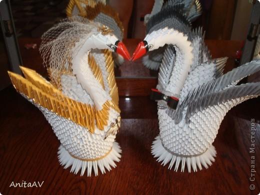 Однажды я начала готовиться к свадьбе... Как и каждая невеста, я стремилась украсить свой праздник. Я вспомнила, что когда-то мне попадались на глаза красивые бумажные лебеди. Но как такую красоту можно сделать? Начала искать и... нашла... Страну Мастеров. Решилась делать. Работу делала по известному МК Т.Н. Просняковой.   фото 5
