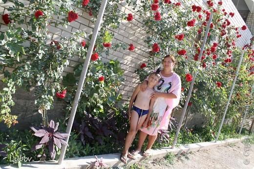 Отдых в Крыму. фото 66
