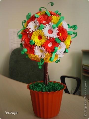 Дерево хризантемковое..)) фото 1