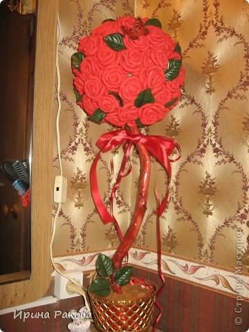 """Детище новогодних каникул.""""Мандариновый синдром"""" фото 3"""
