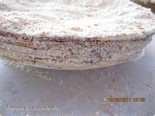 Наполеон: тесто:3шт-яйца, 1,5ст-сахара, 150гр-слив.масла, 0,5ст- кефира, 2-3ст-муки, тесто делать тугим, для того чтобы катать коржи...Тесто раскатываю примерно по диаметру блюда, на которое буду выкладывать и промазывать коржи! Крем: 1литр-молока, 1ст-сахара, 2шт-желтка, 100гр-слив.масла, 3 ст.л.-какао, 2ст.л-муки. Все взбиваю в кастрюле и ставлю на огонь, при постоянном помешивании варю крем до загустения, поставила остывать! фото 4