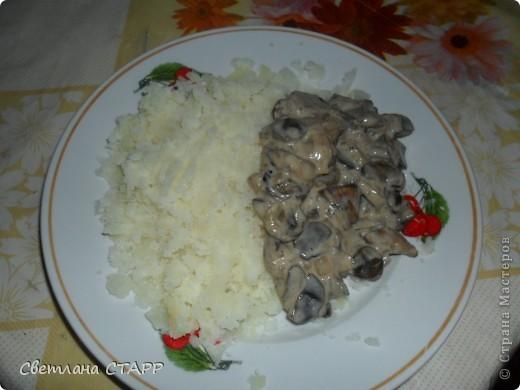 Угощаю грибной зажаркой с картофельным пюре. фото 1
