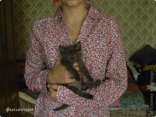 С дочкой подобрали котёнка. Он был такой маленький, голодный, грязный,слабенький. И мы решили его выходить. фото 14