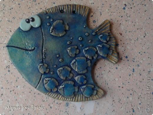 Вот и у меня уже есть Рыбка-мамочка(а может это и папочка...,не знаю, судить вам))  Правда извиняюсь за качество фото, но истинный цвет попытаюсь передать в других фотографиях: фото 1